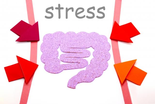 慢性ストレスが腸に与える影響とは
